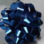 microstarbow los blauw
